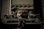 125-AGENOR-_MG_8465